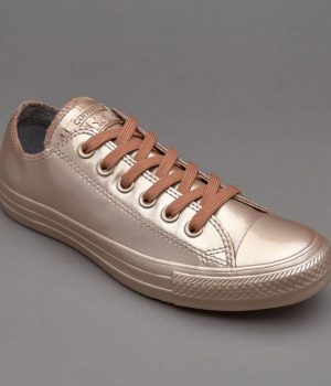 converse-all-star-rubber-silver (4)